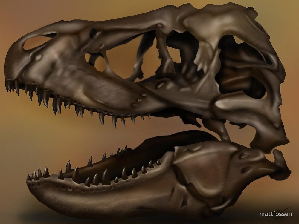 T. Rex Skull by mattfossen