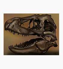 T. Rex Skull Photographic Print