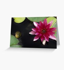 Lilie & Lotus 3 Grußkarte
