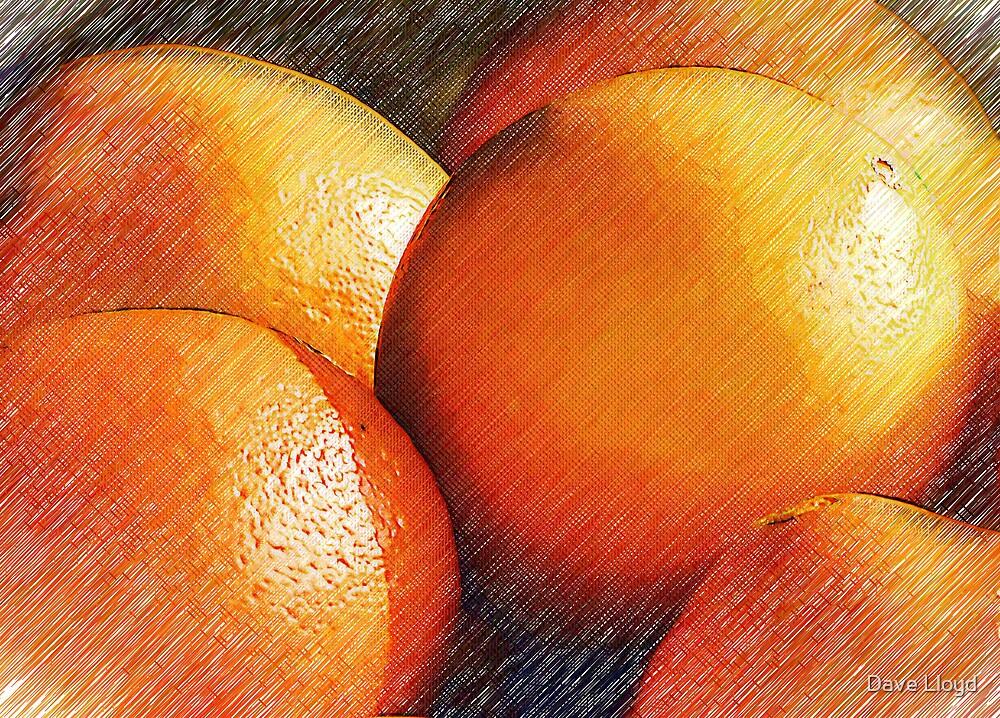 Oranges In Pencil by Dave Lloyd