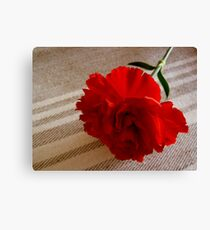 Carnation  Leinwanddruck