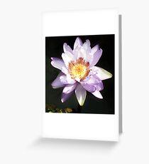 Lilie und Lotus 6 Grußkarte