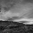Split Point Lighthouse by Mike Emmett