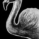 Leucism: Chilean Flamingo by NoelleMBrooks