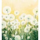 Play with dandelion seeds by Embla Granqvist