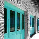 Coastal Doors by RodriguezArts