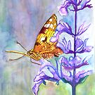 PAINT THIS PHOTO ! - PAINTED LADY (challenge) by Tridib Ghosh