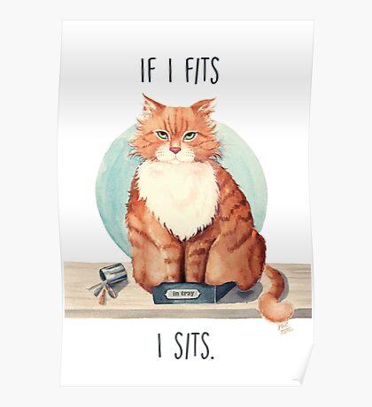 If I fits I sits Poster