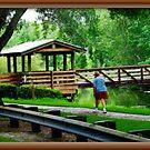 Walk Through The Park by glink