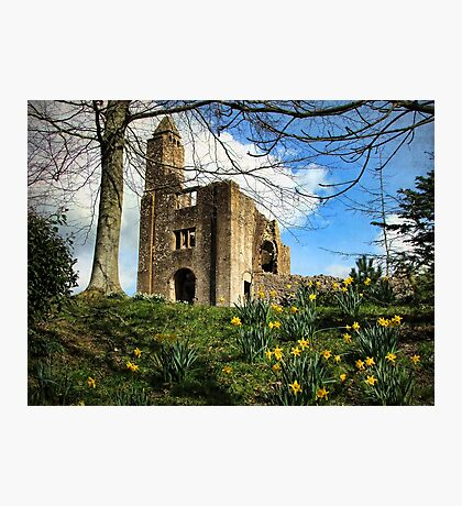 Springtime at (Old) Sherborne Castle Photographic Print
