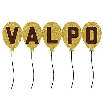 valparaiso university  by ssorg