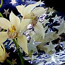 Good Morning Starshine by Michael May