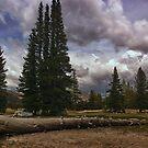 Yosemite Valley by dagmar luhring