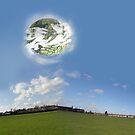 Planetoids by Robert Burton