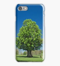 Treasure Tree iPhone Case/Skin