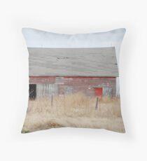 Rare Red Barn in Kansas Throw Pillow