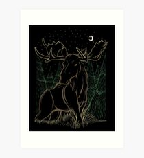 Canadian Bull Moose Art Print