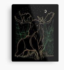 Canadian Bull Moose Metal Print