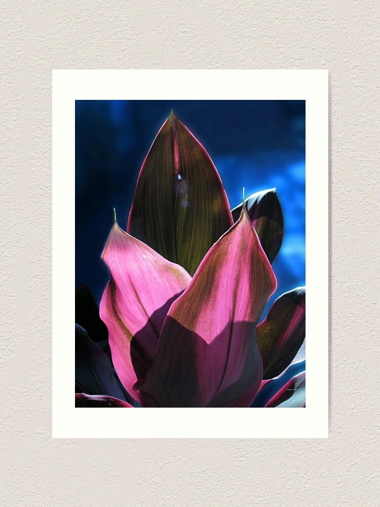 Alternate view of Tropical Foliage Art Print