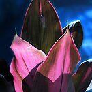 Tropical Foliage by Ellen Cotton