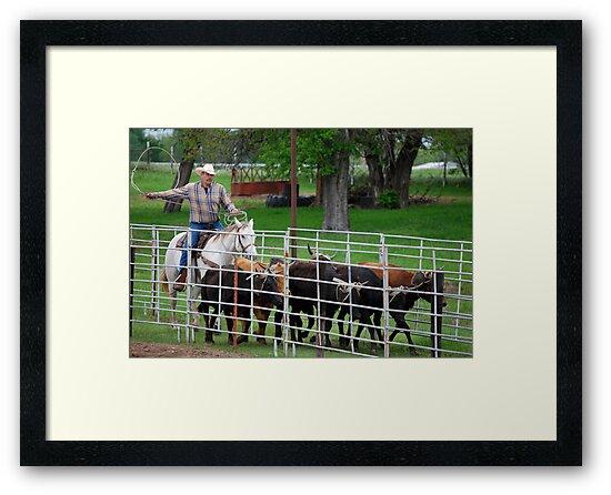 Herding the Steer Back to the Pen by Suz Garten