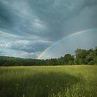 After the Rain by David Lamb