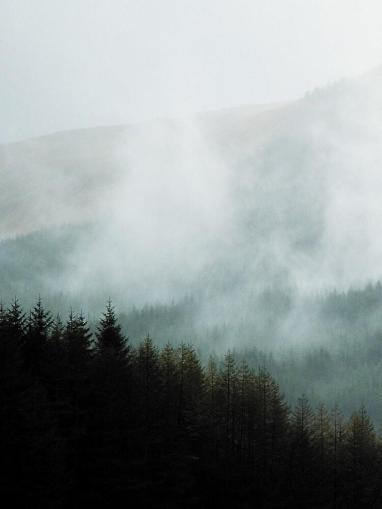 «Brume hivernale dans les vallées» par patricemestari
