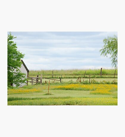 Kansas Country Solitude Photographic Print