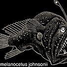 Angler Fish - Dark Background by EplusC Studio