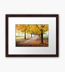 Bright Autumn Colours Framed Print