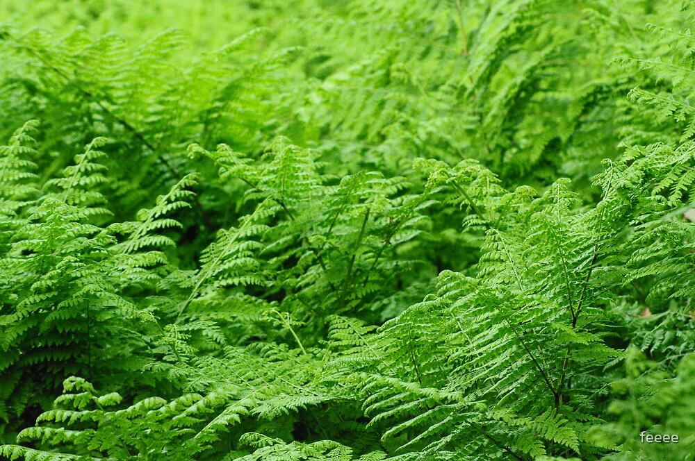 greenery by feeee