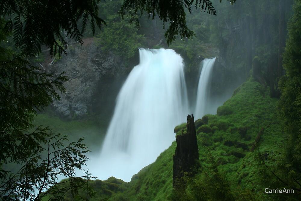 Sahalie Falls  - Santiam Pass  Oregon by CarrieAnn