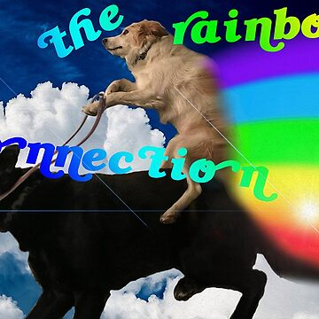 The Rainbow Connection Dog Edition  by michaelroman