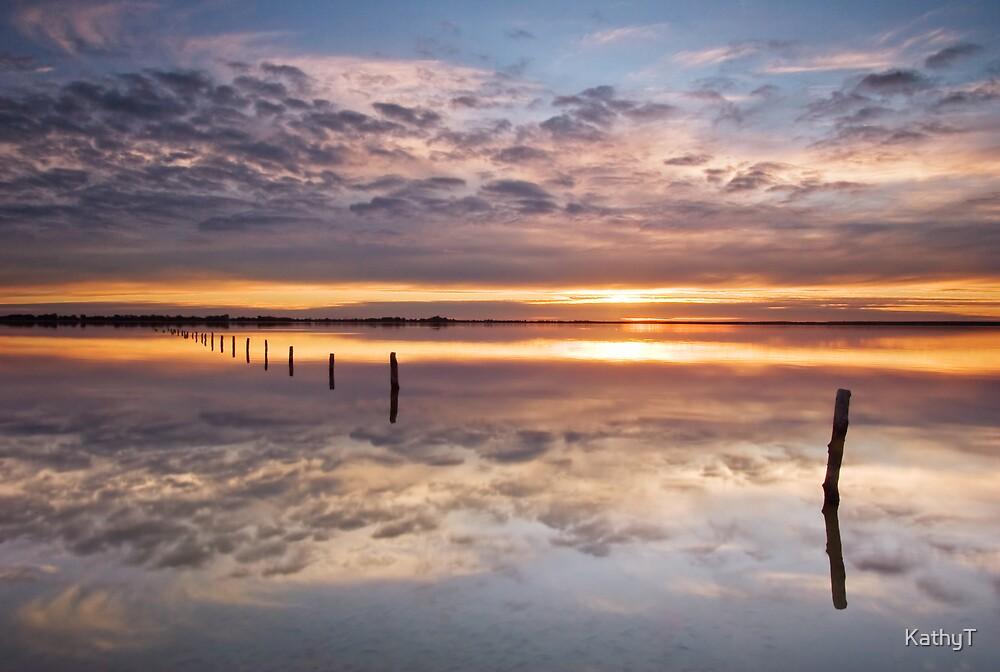 Reflections on Bonney by KathyT