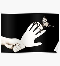 Butterfly sitting on a rubber glove Poster