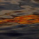 Liquid Light by Al Williscroft