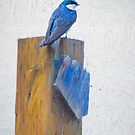 Bluebird Mixed Media Art Painting by Bo Insogna