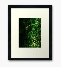 Grenwich Framed Print