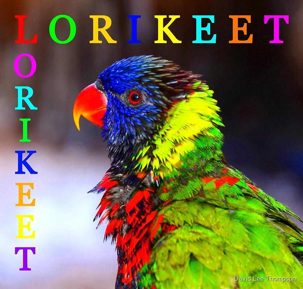 Lorikeet by David Lee Thompson