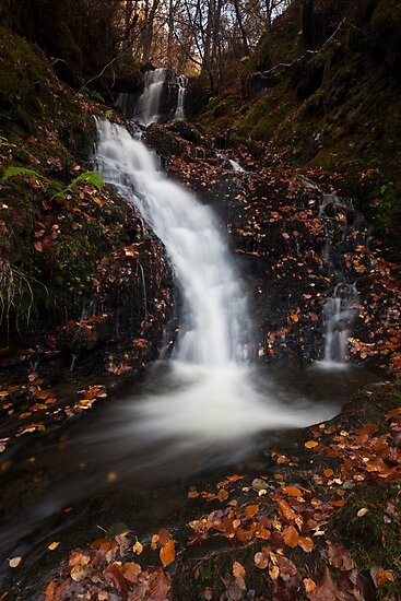 autumn in the birks of aberfeldy by codaimages