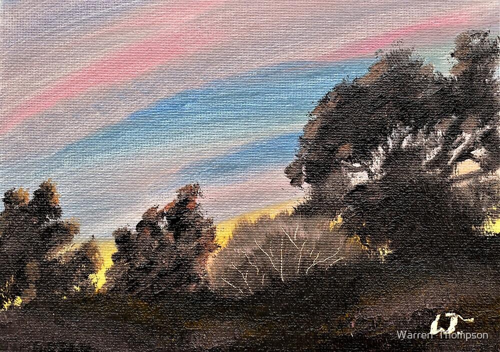 Mountain Sunset by Warren  Thompson