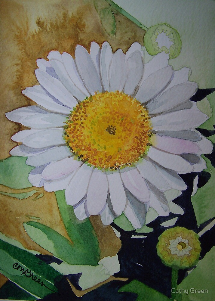 Watercolor of a Daisy by Cathy Green