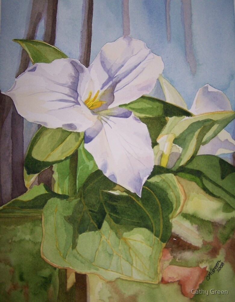 A Trillium in the Garden by Cathy Green