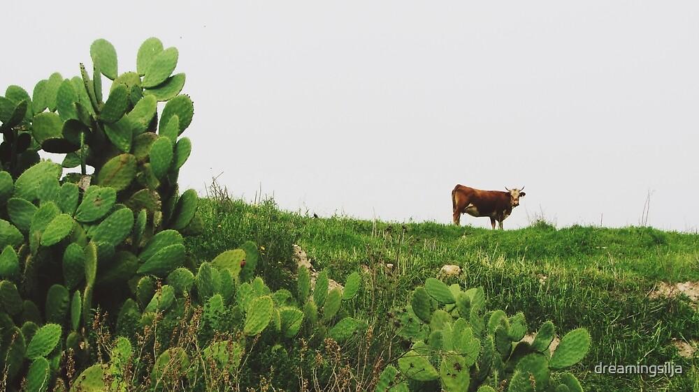 Cacti Cow by dreamingsilja