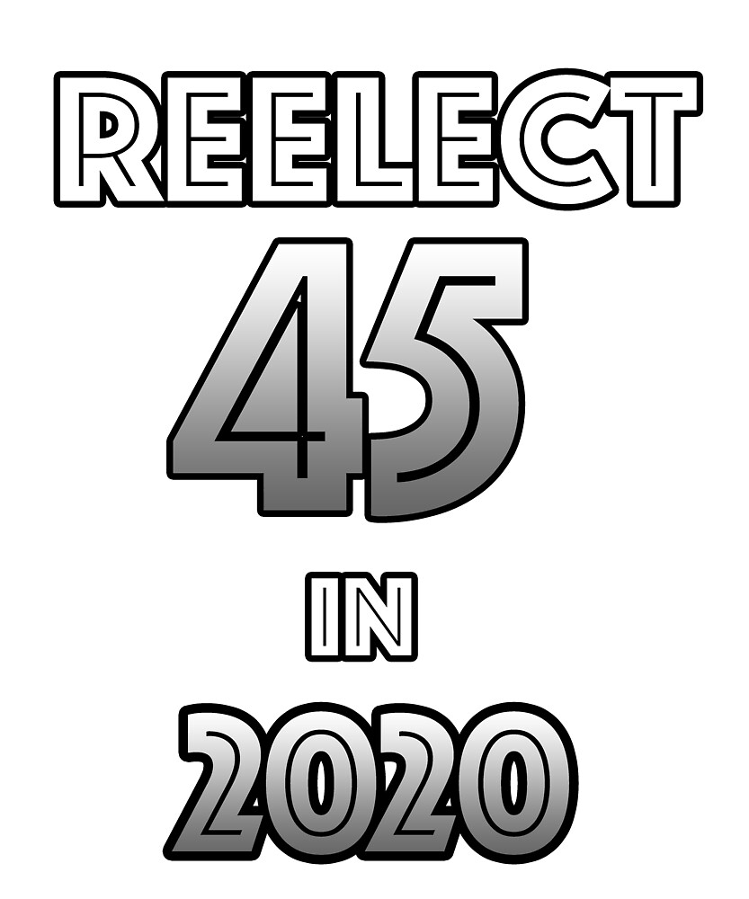Reelect 45 in 2020 by BlueDolphinArts