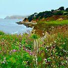 Wild Garden by Barbara  Brown