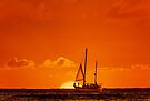 Waiting For The Green Flash by Alex Preiss