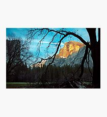 Half Dome Yosemite Photographic Print