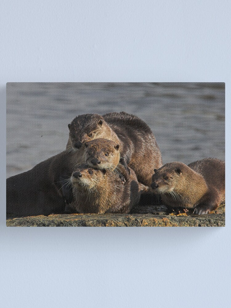 Alternate view of Whole Otter Love Canvas Print