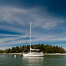 Anchorage at Cabbage Island by toby snelgrove  IPA
